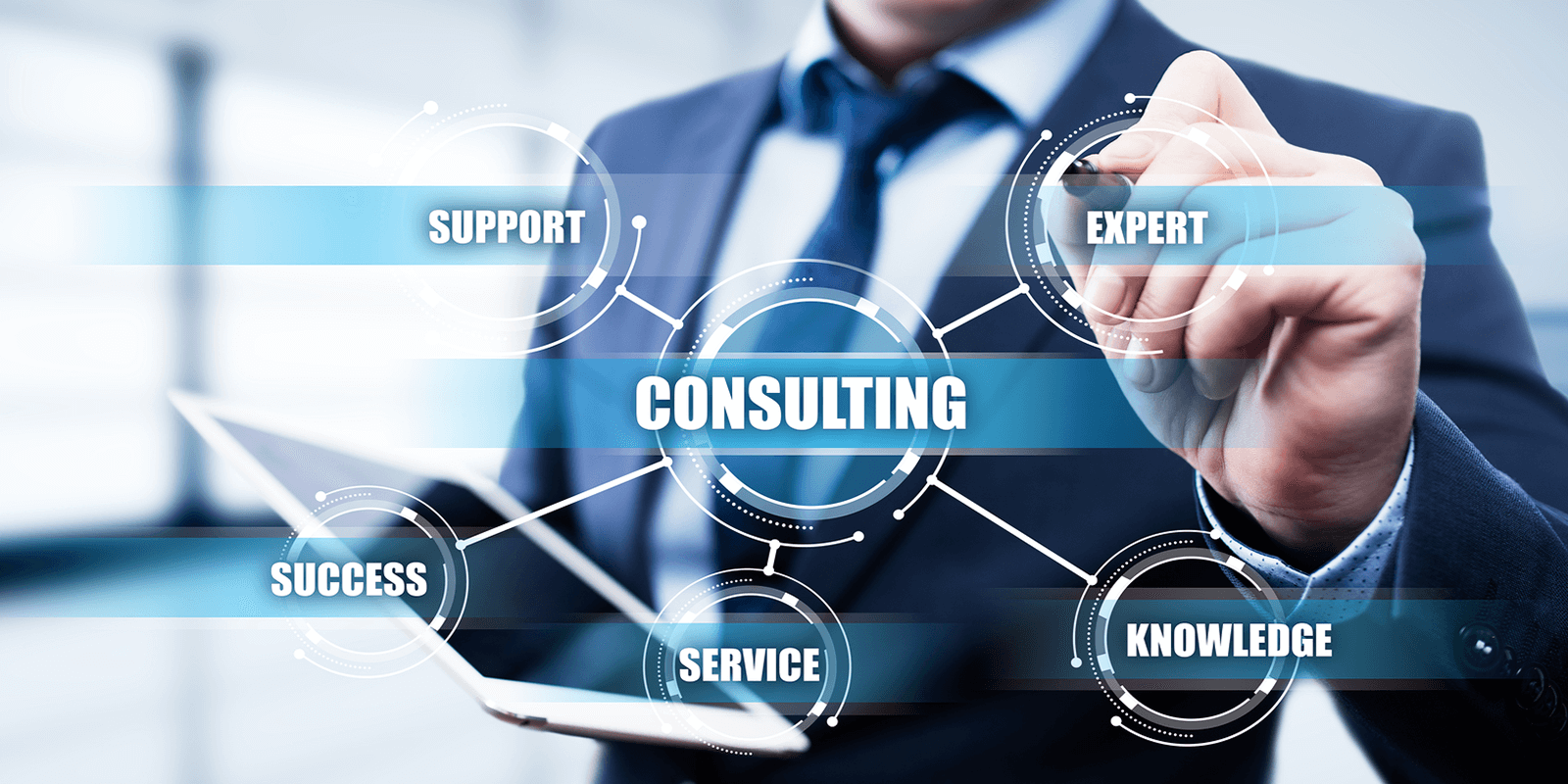 Business Innovation Team, Services, Consulting
